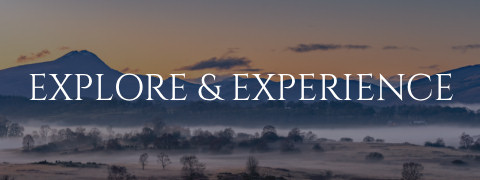 Explore and Experience Tile