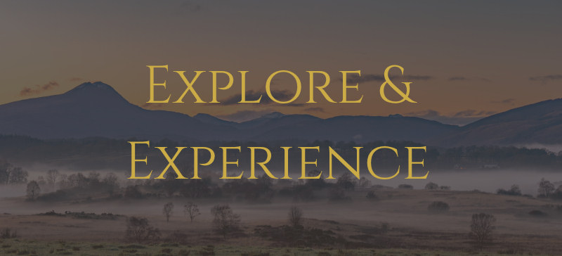 Explore and Experience
